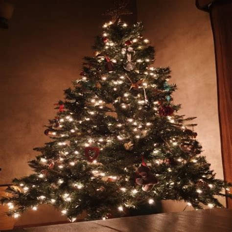 imagenes hermosas de arboles de navidad hermoso arbol de navidad imagenes bonitas frases bonitas