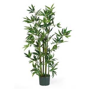 Tall Lily Vase Arrangements Plants Rugzoom