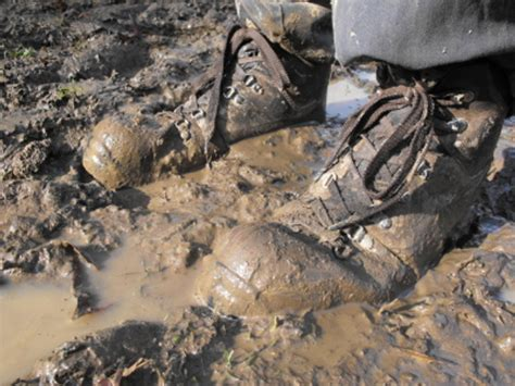 in the mud zen musings books monday mud