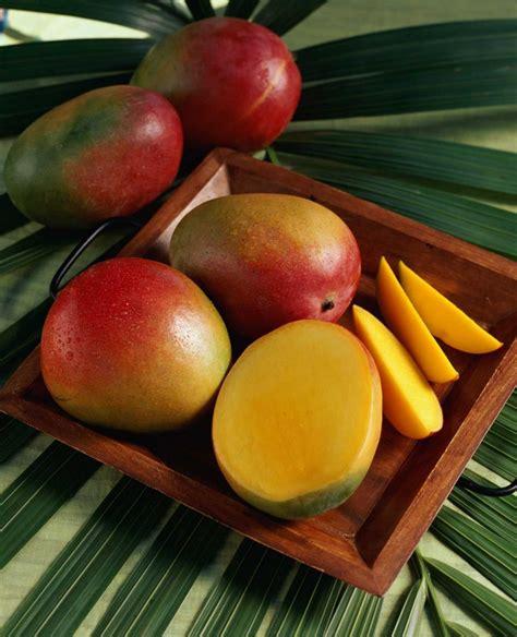 Fruit Mango all about mangos mango strawberry smoothie recipe the