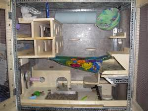 Breeding Hutches Chinchilla Cages Top 8 Tips For Buying Chinchilla Co