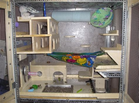 Cool Pets Rabbit Hutch Larry S Diary Chinchilla Cages Top 8 Tips For Buying