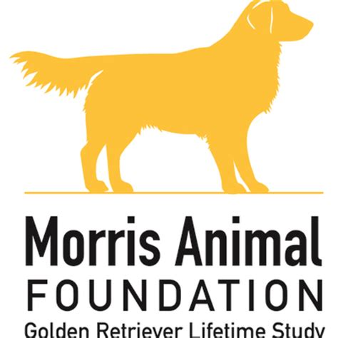 golden retriever lifetime study booster is now custom ink fundraising