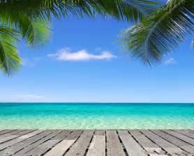 beach themed backdrop reviews online shopping beach
