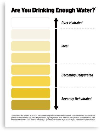 pregnancy urine color quot urine color chart color chart quot canvas prints by
