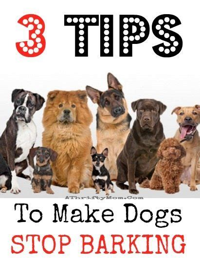 how to keep dog from barking a thrifty mom 12 new articles