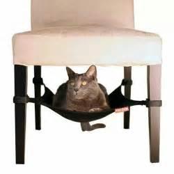 cat hammock pets at home pinterest