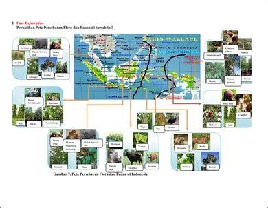 flora dan fauna indonesia flora fauna penyebaran flora dan fauna di indonesia