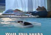 i should buy a boat meme origin image 431327 i should buy a boat cat know your meme