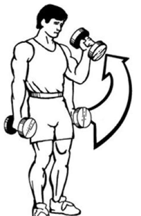 Exercícios para braço rosca martelo | Receitas Anabólicas