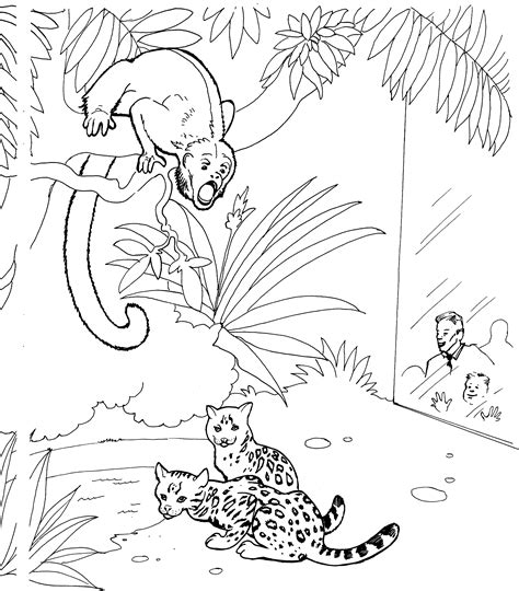 jungle monkey coloring page monkey coloring pages