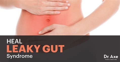 8 supplements to heal a leaky gut 4 steps to heal leaky gut and autoimmune disease