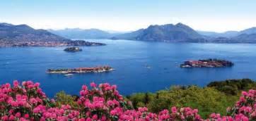 Images Of Magnolias Flowers - lago maggiore art wine and nature