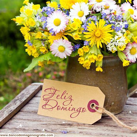 imagenes feliz viernes con flores banco de im 193 genes feliz s 225 bado feliz domingo y feliz d 237 a