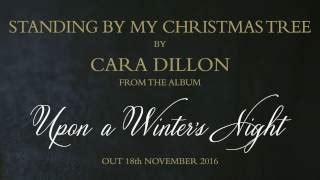standing by my christmas tree lyrics cara dillon
