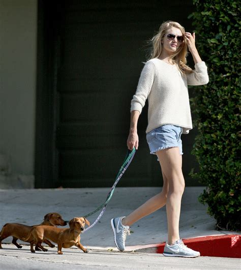 puppies los angeles rosie huntington whiteley in shorts walks dogs in los angeles hawtcelebs