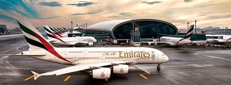 fly emirates careers cabin crew emirates airlines careers for senior vice president
