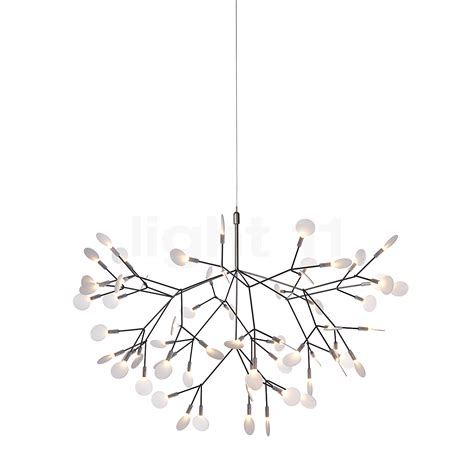 Moooi Pendant Light Moooi Heracleum Ii Pendant Light Pendant Lights Ls Lights Light11 Eu