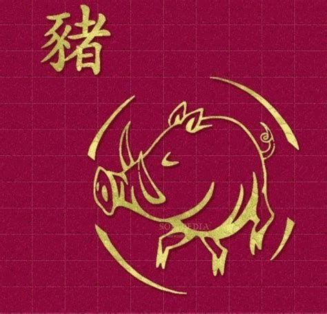 horscopo chino 2016 chancho oraculoching hor 243 scopo chino 2017 el cerdo esoterismos com