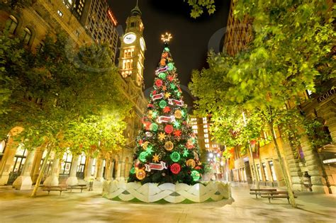 martin place christmas tree celebration yeslimotaxis com au