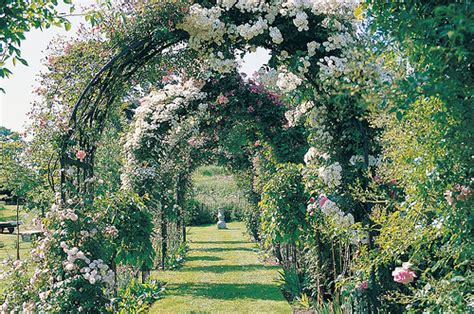 Garden Flower Arch Arch Flowers Garden Greenery Path Image 188272 On Favim