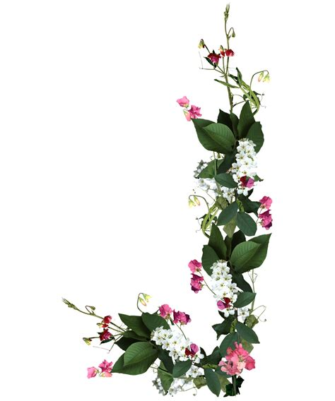 imagenes en png de rosas 8 flores para photoshop png images border frames for