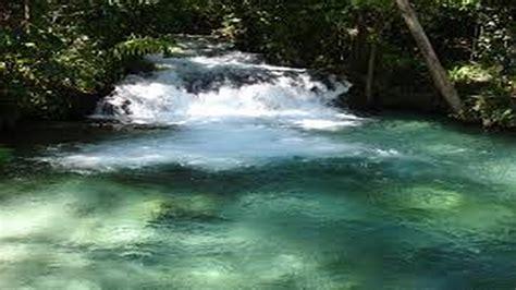 ruscello in giardino suoni rilassanti della natura cascata e ruscello nel