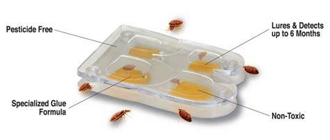 bed sized bed bug trap buggybeds bed bug detectors allergybegone com