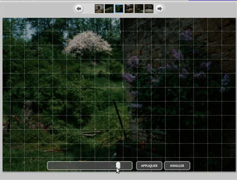 gimp making a grid picasa rotating in gimp using a grid super user