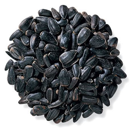 is black sunflower seeds for birds duncraft duncraft black sunflower bird seed