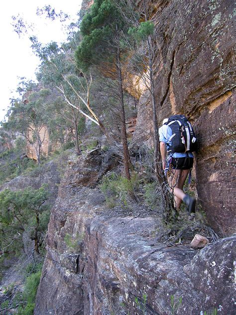 mountain rubber st glen davis canyoning ozultimate canyoning
