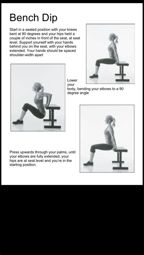 benching for beginners 1000 ideas about beginner weight lifting on pinterest 3