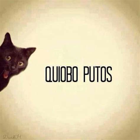 imagenes graciosas y groseras frase grosera funny in spanish pinterest humor