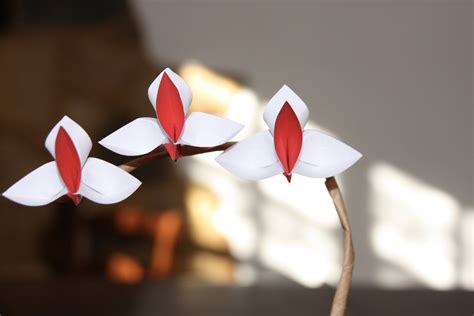Orchid Origami - origami tutorial orchid