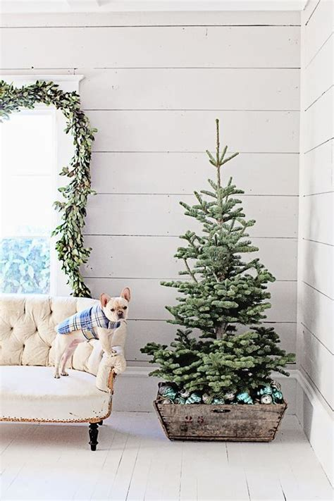 christmas tree too small for stand best 25 small trees ideas on