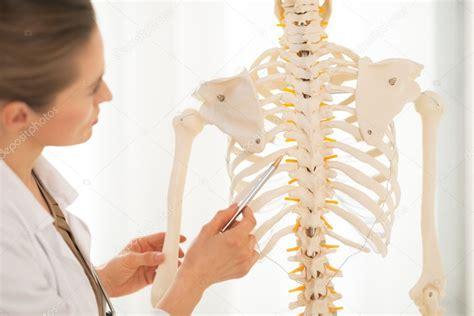 Docteur Pointant Sur La Colonne Vert 233 Brale Du Squelette