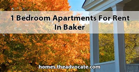 1 bedroom apartments for rent in jackson heights ny 1 bedroom apartments for rent in original stylish