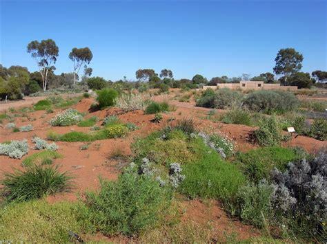 Arid Lands Botanic Gardens Australian Arid Lands Botanic Garden