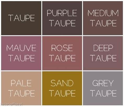 toupe color best 25 taupe ideas on pinterest taupe color schemes