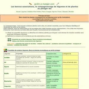 plantes compagnes compagnonnage et associations de
