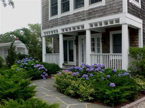 front yard landscaping with hydrangeas hydrangeas and evergreens landscaping