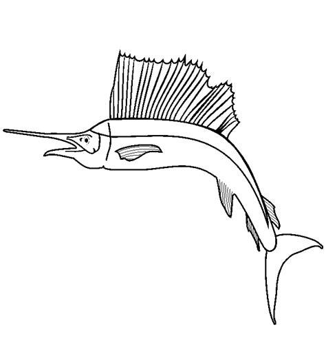 sailfish coloring pages sailfish free colouring pages