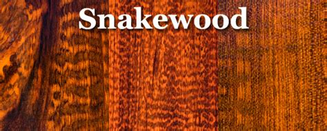 Snakewood Flooring by Walnut Tropical Hardwood Lumber Prices Wood For Sale For