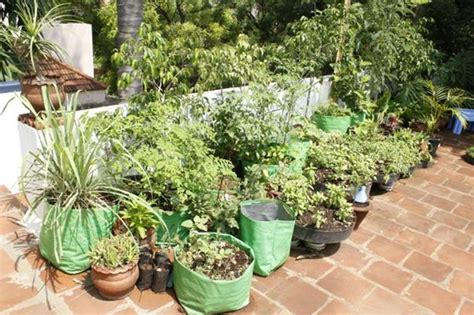 How To Make Kitchen Garden In Pots by Who Says A Kitchen Garden Can T Be Beautiful