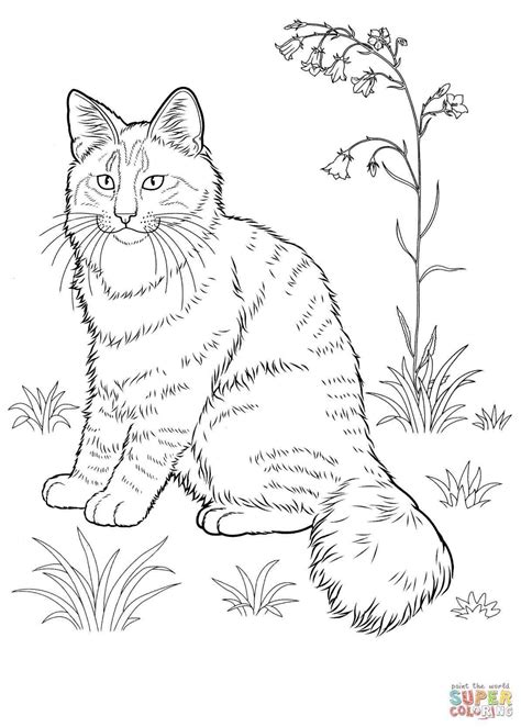 coloring pages of real kittens 93 free printable kitten coloring pages free printable