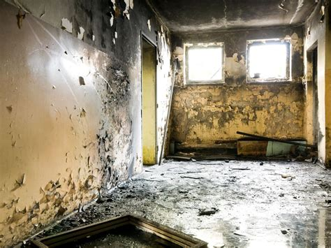 Black Mold Symptoms And Health Effects Hgtv