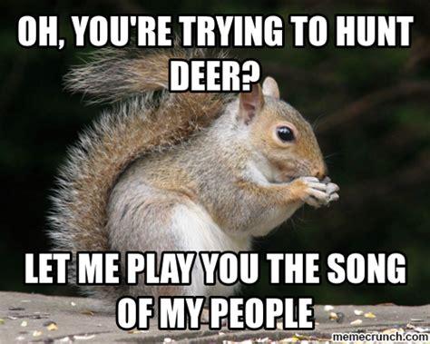 Squirrel Meme - funny squirrel memes dog breeds picture