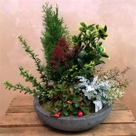 composizione giardino composizione di piante giardino media giardino fiorito