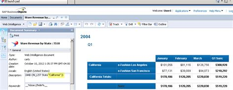 sap full version software free download sap bi launch pad download mewinnk