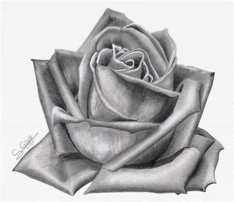 dibujos realistas a lapiz de flores dibujos de amor dibujo de amor a lapiz
